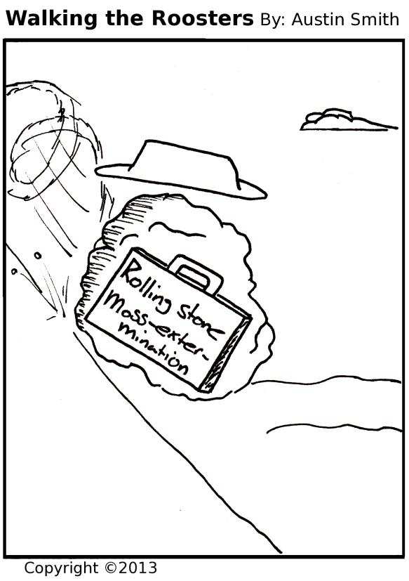 little boulder