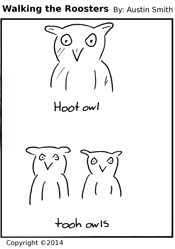 backwards owls